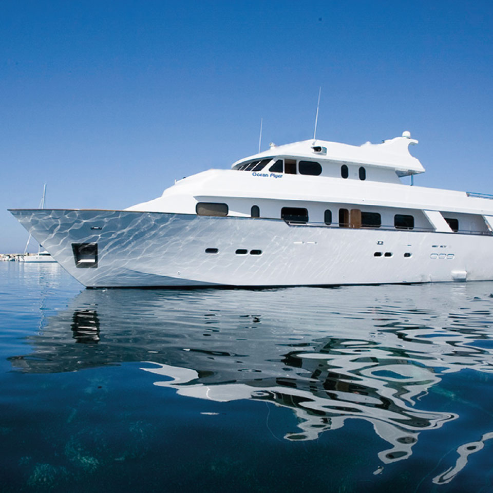 Yacht Ocean 1